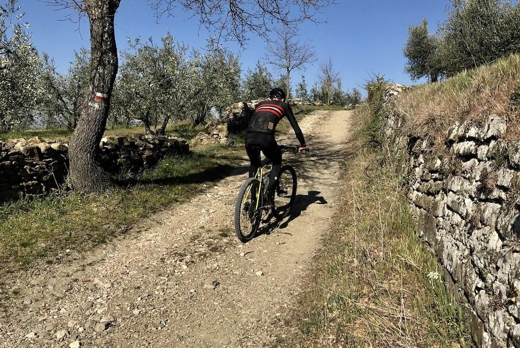 Bike tour la via di Francesco